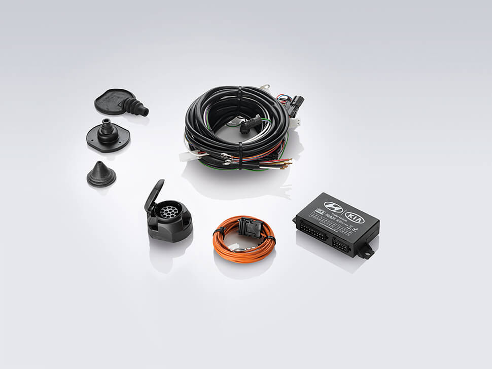 Kit eléctrico 7 polos (SW)